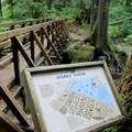 There are interpretive signs throughout trail.- Deception Falls Interpretive Trail