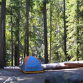 Standard campsite at Johnny Creek Campground.- Upper + Lower Johnny Creek Campground