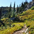 The trail to Maple Pass.- Maple Pass Loop Hike
