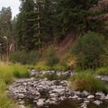 Camas Creek runs alongside the campground.- Ukiah-Dale Forest State Park Campground