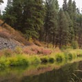Camas Creek.- Ukiah-Dale Forest State Park Campground