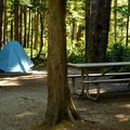 Typical site in Loop A.- Newhalem Creek Campground