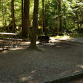 Typical site in Loop A. - Newhalem Creek Campground