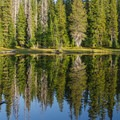 Small, tranquil pond along the trail toward North Matthieu Lake.- Matthieu Lakes