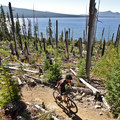 The burned area to the north of the lake offers little shade and a dusty trail.- Waldo Lake Trail