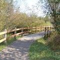 Path leading to the Jackson-Frazier Wetland. - Jackson-Frazier Wetland