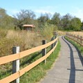 Path leading to the Jackson-Frazier Wetland.- Jackson-Frazier Wetland