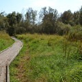 Boardwalk during the dry season in the Jackson-Frazier Wetland.- Jackson-Frazier Wetland