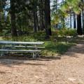 Day use picnic area.- Lake Wenatchee State Park