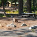 A typical campsite at Lake Wenatchee State Park South Campground.- Lake Wenatchee State Park South Campground