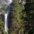 Lower Yosemite Falls.- Yosemite Falls