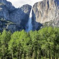 Yosemite Falls from the valley floor.- Yosemite Falls