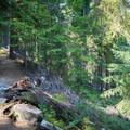 Short and mild ascent.- Hidden Lake