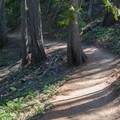 Well-travelled trail.- Hidden Lake