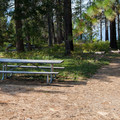 Day use picnic area.- Lake Wenatchee State Park North Campground