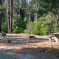 Day use picnic area.- Nason Creek Campground