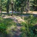 Trail through campground.- Nason Creek Campground