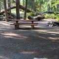 Typical campsite.- Nason Creek Campground