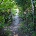 Trail to Nason Creek.- Nason Creek Campground