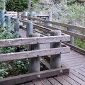 You'll find this unique boardwalk along the Taylor Dunes Trail.- Carter Dunes