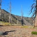 Backcountry camp.- Mount Islip Loop Trail