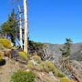 Islip Ridge Trail.- Mount Islip Loop Trail