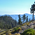 Looking down Islip Ridge Trail toward Crystal Basin.- Mount Islip Loop Trail