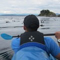Paddling near Matia Island.- Matia Island to Orcas Island Sea Kayaking