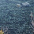 Looking down into the clear waters of Fox Cove from Fox Point.- Sucia Island: Fox Point Sea Kayaking