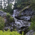 One of the little surprises on the trail. - Commonwealth Basin Trail to Red Pass