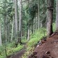 The Commonwealth Basin Trail continues to the left.- Commonwealth Basin Trail to Red Pass