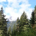 The trail opens with mountain peaks after 2.5 miles on Commonwealth Basin Trail.- Commonwealth Basin Trail to Red Pass