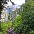 The path opens to views of beautiful mountain peaks.- Commonwealth Basin Trail to Red Pass