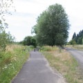 A typical stretch of trail between Banks and Manning trailheads.- Banks-Vernonia Trail