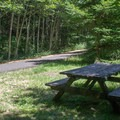 Picnic tables dot the side of the main trail.- Banks-Vernonia Trail