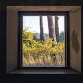 Looking through a window of an abanoned bunker in Fort Warden.- Port Townsend Sea Kayaking