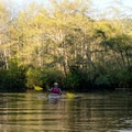 A house overlooking a bend in the river.- Sooes River Kayak/Canoe