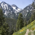 Looking back at Peak 9445 from the Alpine Way Trail.- Alpine Way Trail, Iron Creek to Stanley Lake