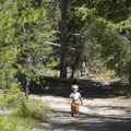 With very little vertical gain, this trail is a good option for budding young hikers.- Alturas Lake Trail