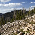 The switchbacking trail to the Cramer Divide.- South Fork of the Payette River, Hidden Lake and Cramer Divide