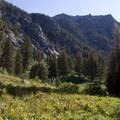 South Fork trail above Fern Falls.- South Fork of the Payette River, Taylor Springs to Elk Lake