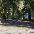 Day use picnic area.- Kachess Lake Campground