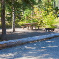 Typical campsite at Kachess Lake Campground.- Kachess Lake Campground