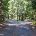 Road through Kachess Lake Campground.- Kachess Lake Campground