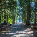 Campsites near the lake.- Kachess Lake Campground