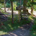 Lake shore trail.- Kachess Lake Campground