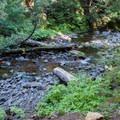 Silver Creek.- Kachess Beacon