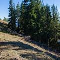 Trail along the ridge.- Kachess Beacon