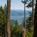 Looking out over the Columbia River Gorge from Wauna Point.- Wauna Point Hike
