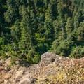 Precipitoius drops surround the point.- Wauna Point Hike